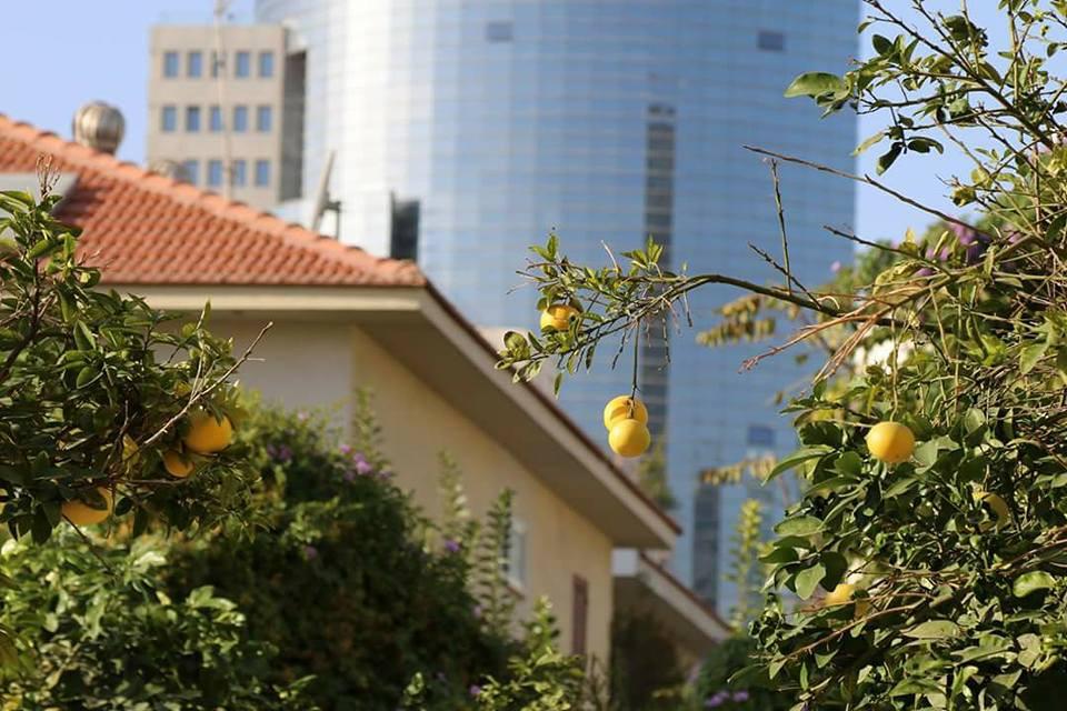 Zoli Keller_Tel Aviv.jpg