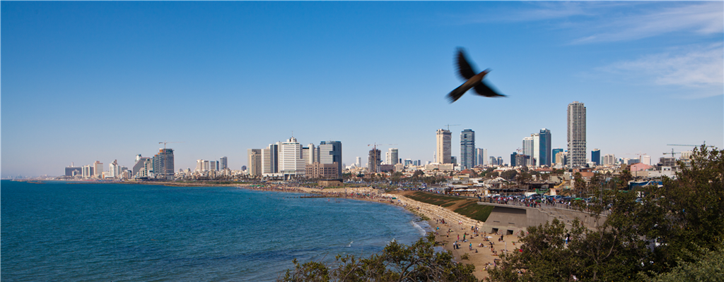 Tel Aviv Norm Dana Friedlande