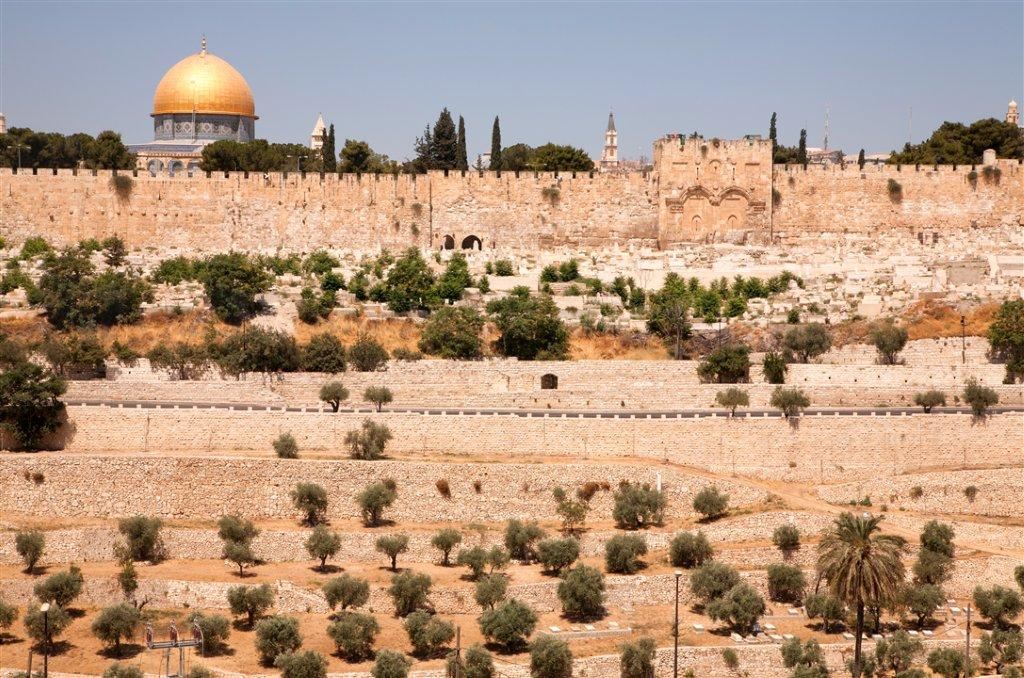 The Mount of Olives Noam Chen.jpg