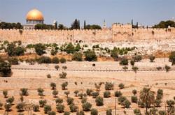 The Mount of Olives Noam Chen.jpg