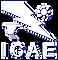 Logo White ICAE-04.png