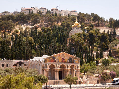 Churches on the Mount of Olives