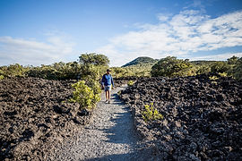 Rangitoto Island lava fields_006.jpg