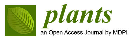 Plants_partnership--logo.png