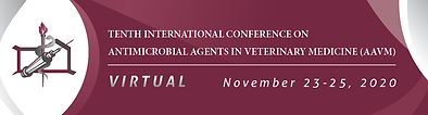 AAVM 2020 Banner_Virtual.png