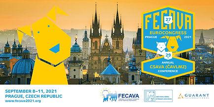 FECAVA2021_promoban-2.jpg