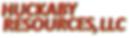 Company Logo LG.png