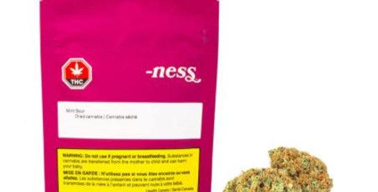 NESS - Mint Sour [3.5G]