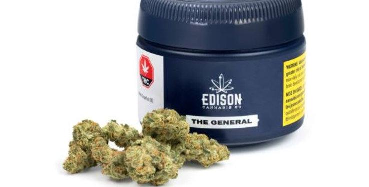 EDISON GRAPEFRUIT GG4 (THE GENERAL)