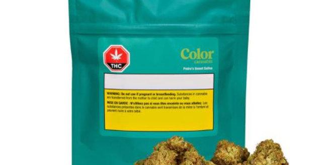 COLOR CANNABIS - Pedro's Sweet Sativa 3.5 Gram