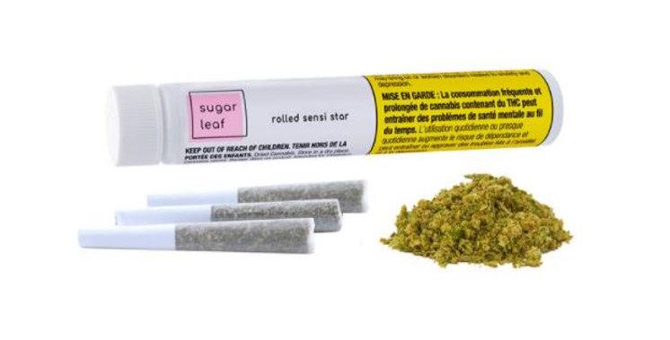 SUGARLEAF ROLLED SENSI STAR