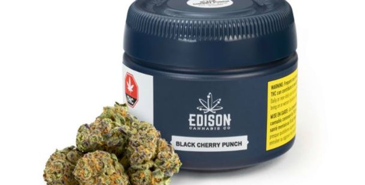 EDISON BLACK CHERRY PUNCH