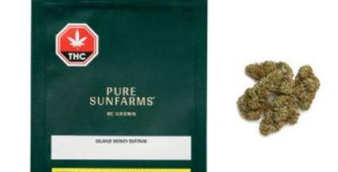 PURE SUNFARMS - Island Honey [3.5G]