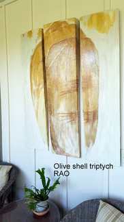 Olive Shell triptych