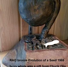 Seed Erupting