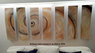 Polyptych Bullseye Shell