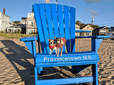 Women's Week in Provincetown,MA