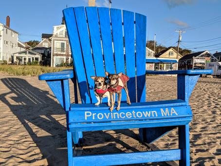 Women's Week in Provincetown,MA