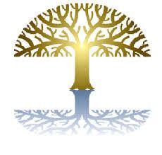 Delaware County Health Coalition Tree Sy