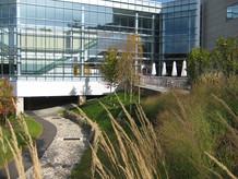 Pharmaceutical Corporate Campus