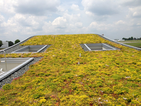 Hanover Township Public Works Greenroof