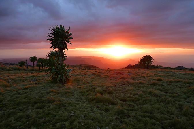 3_2_Simines_sunset.jpg