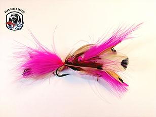 Salmon - Gold-EY Pink & Fuchsia.jpg
