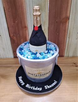 Bottle on Ice Birthday Cake
