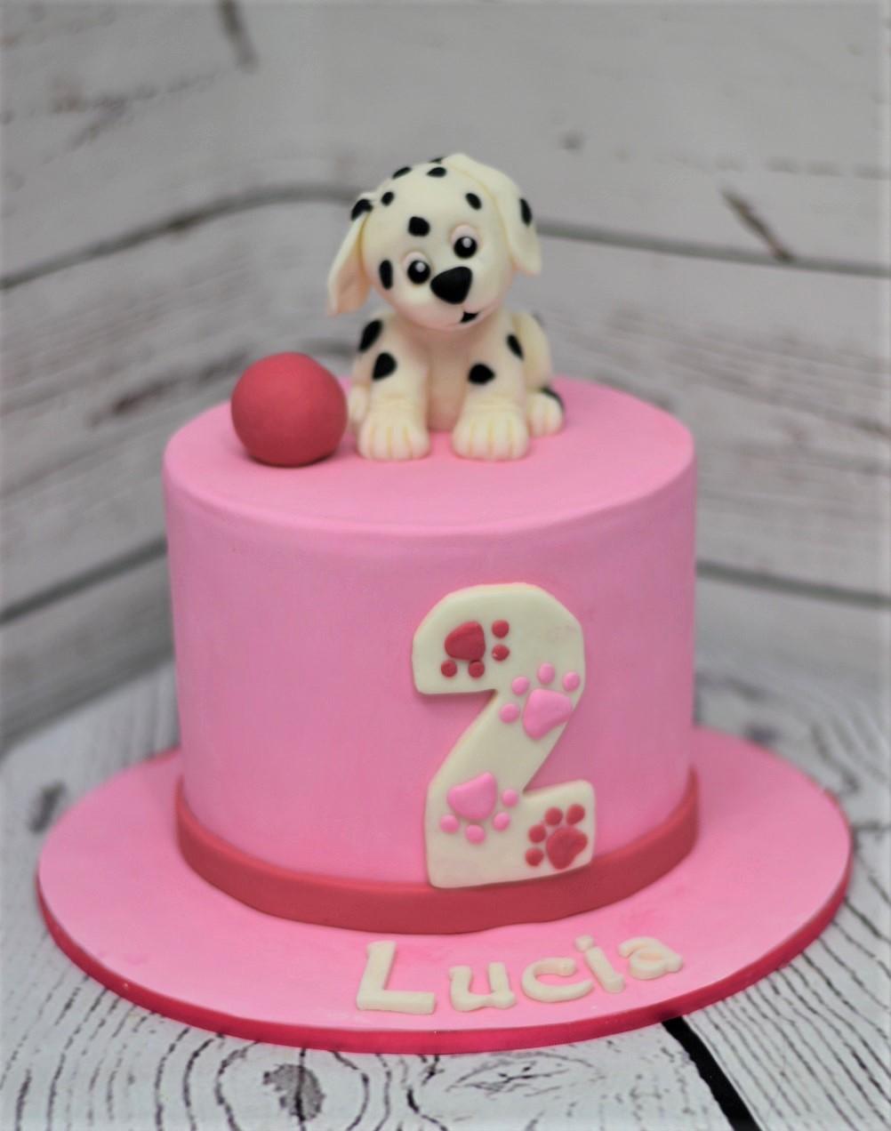 Dalmatian Birthday Cake