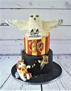 Harry Potter/Fat Unicorn Cake