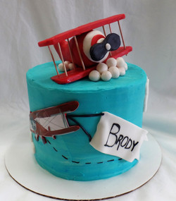 Antique Plane Baby Shower Cake