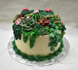 Succulant Birthday Cake