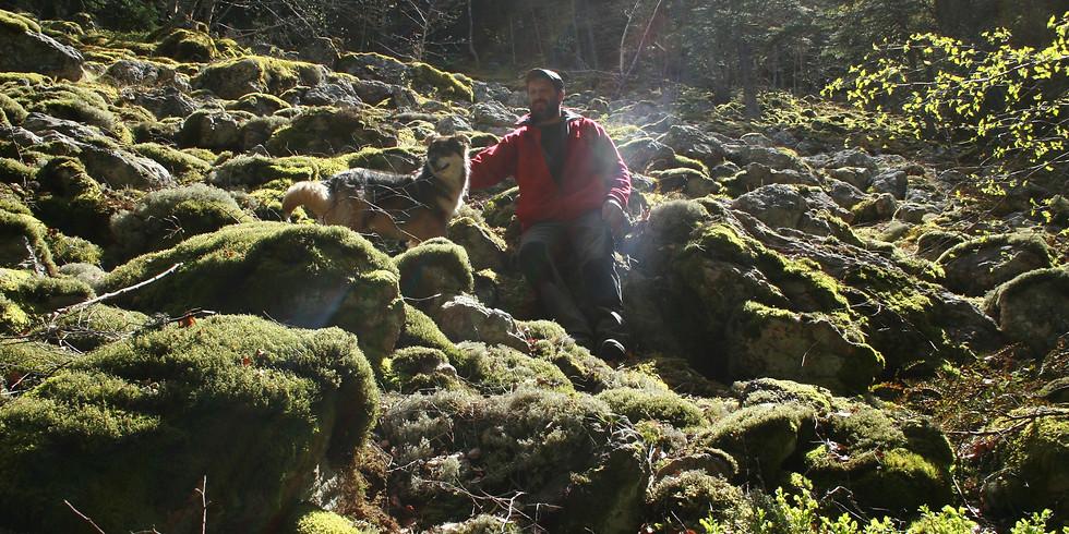 Découverte des lichens sur Saint André en Vivarais - Ardèche