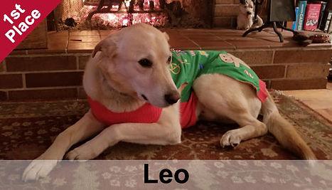Leo_1stPlace.jpg