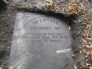 Hayes%20NC4560_edited.jpg