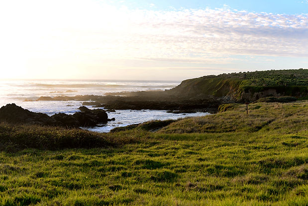 cambria_goldencoast1.jpg