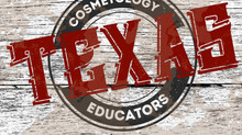 Bills filed in the 85th Legislative Session relating to Cosmetology in Texas