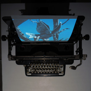 """""""Bureau for Unspoken Stories""""  Six minutes video projection with sound, Paper, Vintage Typewriter.  2020/21"""