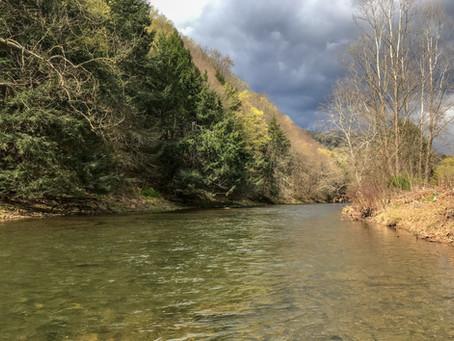 Home Waters: First Fork Sinnemahoning Creek