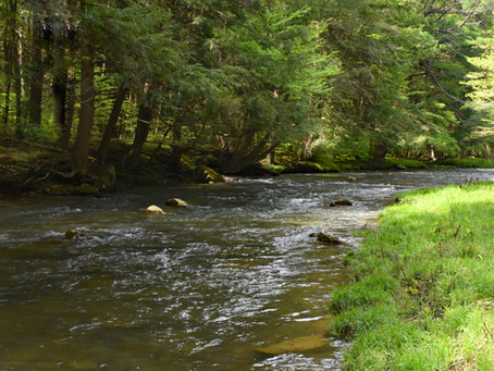 East Hickory Creek