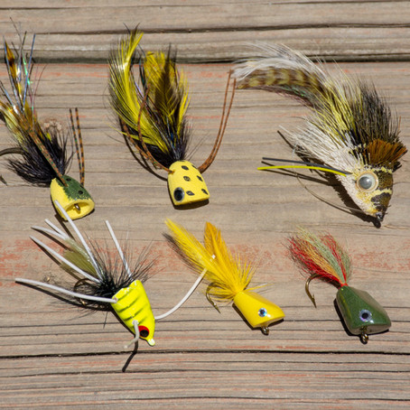 Bass on the Fly: A Popper Primer