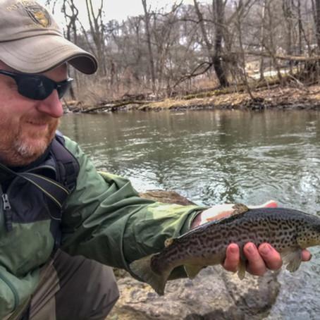 Deer Creek DHALO