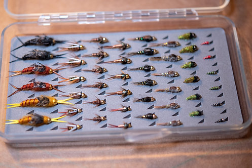 Assortment - Essential Nymphs (48 Flies) with Fly Box