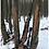 Thumbnail: Hunting Mountain Whitetails - Digital Download EBook