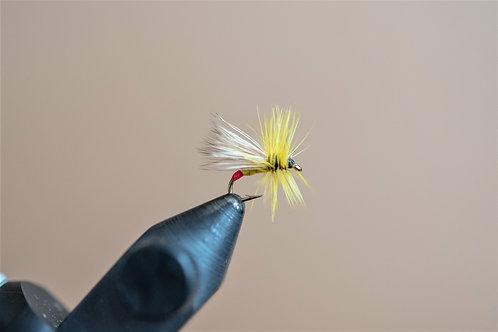 Yellow Sally (Little Yellow Stonefly)