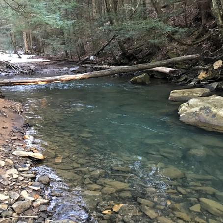 Piney Creek DHALO