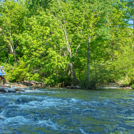 PA's Forgotten Limestoner: Yellow Creek, Bedford County