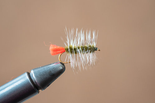 Wooly Worm - Olive