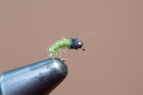 Simple Caddis Green
