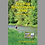 Thumbnail: First Fork Sinnemahoning Creek and its Tributaries - Digital Download